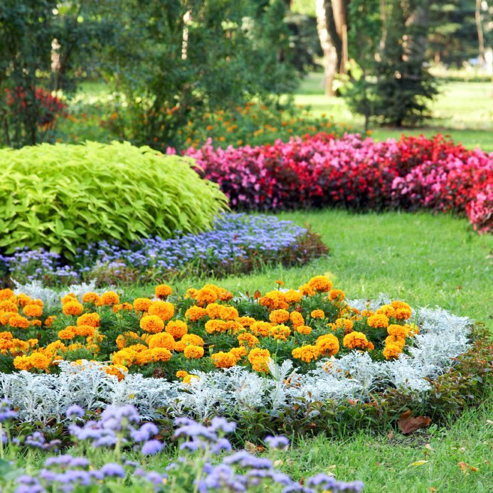 3 easy care flower bed ideas for Easy to care for garden designs